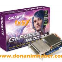 gigabyte_geforce_9600_gt_passivec_01.jpg