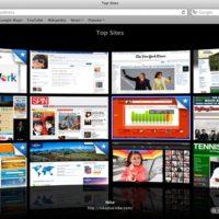 apple_safari_4_top_sites_01.jpg